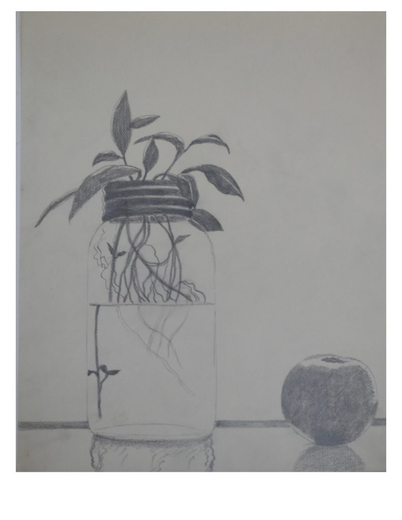 Window sill Still life, Oct 20, 1986, pencil on paper, 21.5 x 27.9 cm